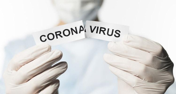 Veja como a equipe da Bim Distribuidora venceu a pandemia do Coronavírus